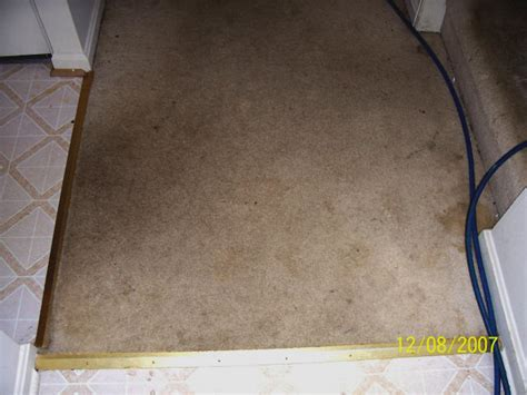 Superior Carpet And Upholstery Cleaning by Superior Fabric Cleaners Superior Carpet And Upholstery