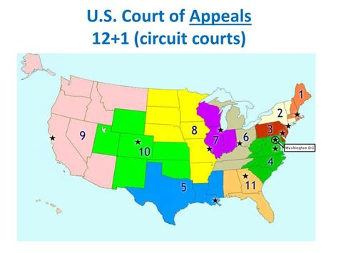 17 Judicial Circuit Search U S Court Of Appeals Images