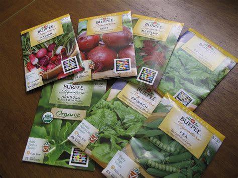 Digs Vegetable Seed Planting And A Fun Surprise Seeds For Vegetable Gardens
