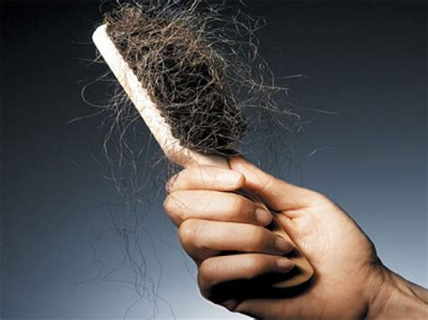 hair shedding hair breakage vs shedding