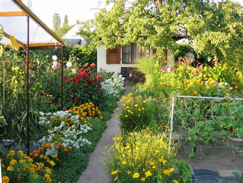 Garten Pflanzen Im August nutzgarten arbeiten im august