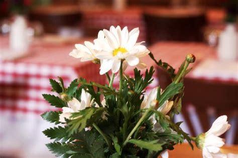 ristoranti co de fiori ristorante panzirone rome navona pantheon co de
