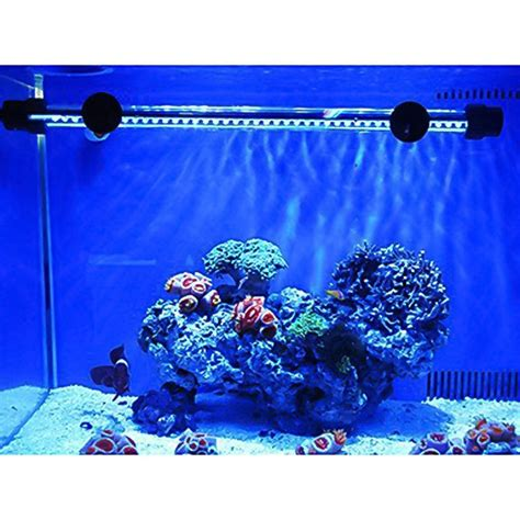 top   fish tank accessories  decorations