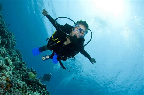 le dive dive in scuba diving snorkeling free magazine for