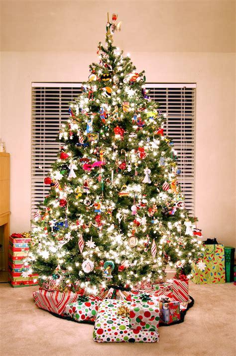d 243 nde comprar tu 225 rbol de navidad en londres el ib 233 rico