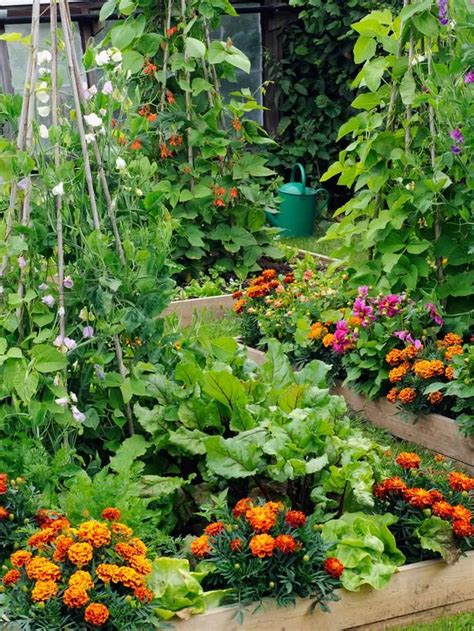 building a vegetable garden in your backyard woodworking