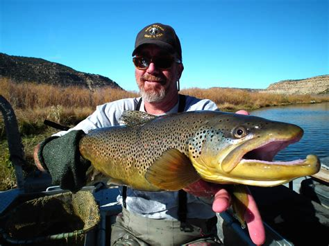 LICENSED TO FISH: NM Game & Fish Officers Take Stock of ...