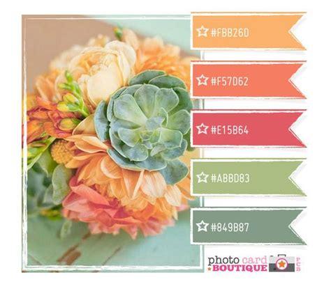 beautiful palette ideas color palettes wedding