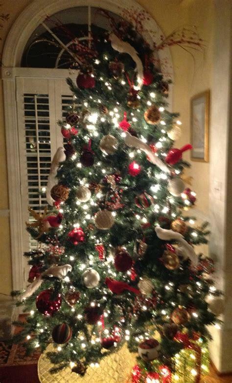 my christmas tree tradition