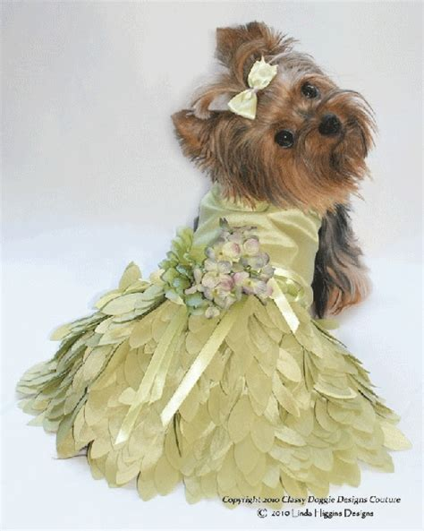 yorkie wedding 10 best images about fashions on yorkie pets and pink