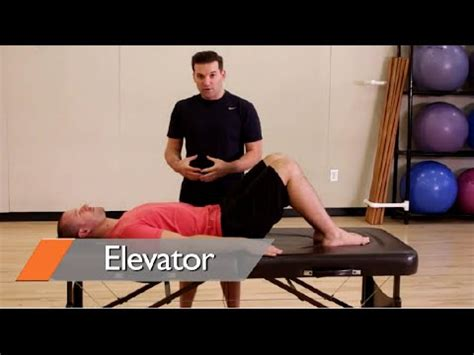 ab workouts  women  home   video learn   unique core activation sequences youtube