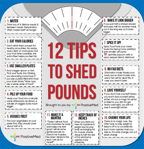 Shed The Pounds 12 tips to help shed pounds