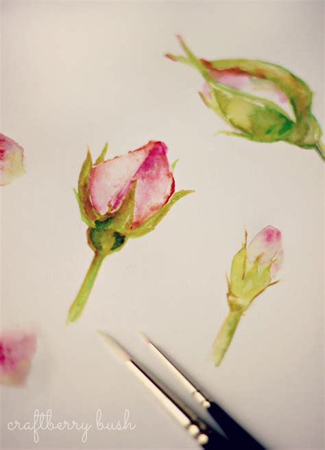 watercolor rose tutorial for beginners these will be good for simple beginner exercise