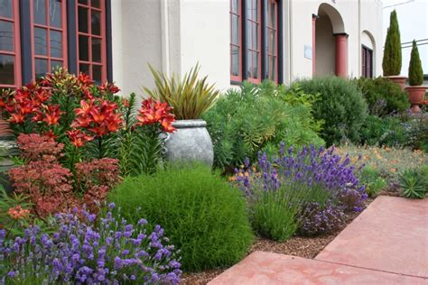passende pflanzen zu lavendel mediterrane gartengestaltung und pflanzen 75 ideen