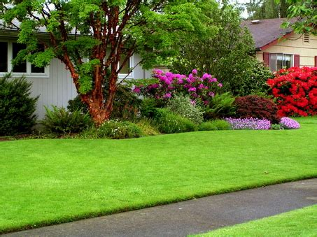 Garden Of Lawn Care Garden Design And Layout Investconsult