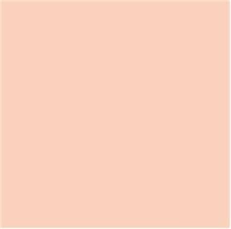 pantone pale peach pastels pinterest peaches 1000 images about pastels on pinterest pastel pantone