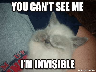 im invisible images  messages