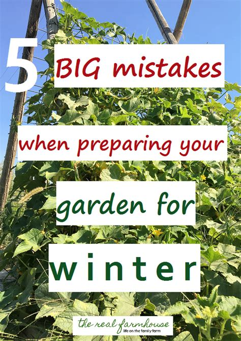 Preparing Garden For Winter by 5 Big Mistakes When Preparing Your Garden For Winter
