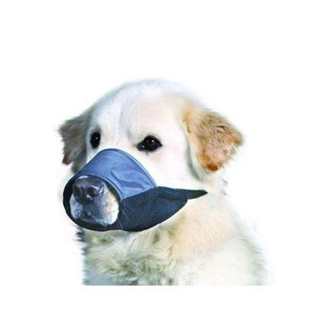 muzzle petco 1000 ideas about muzzle on collars equipment and