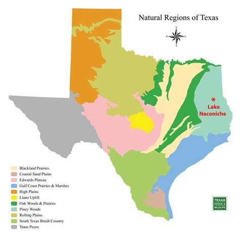 texas map of regions lake naconiche