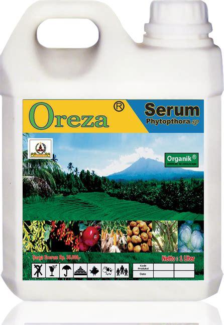 Pupuk Dasar Dolomit aturan pakai aplikasi pada tanaman kacang sumber organik