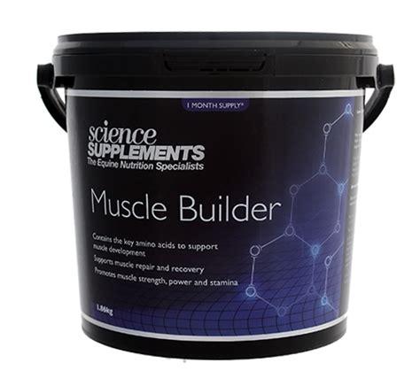 supplement d a m builder building supplement