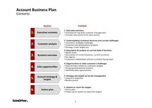 salesdriver account business plan