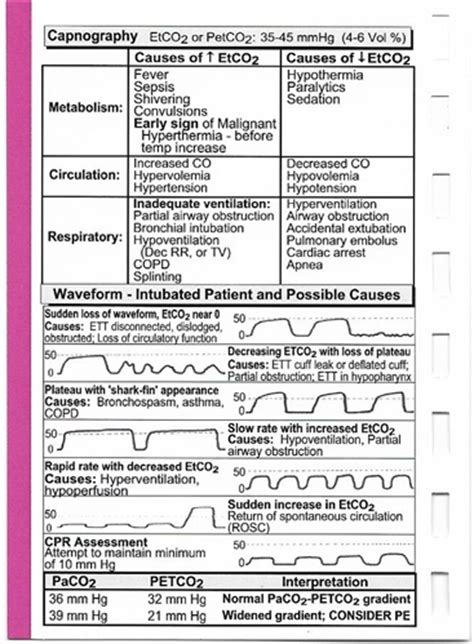 The Critical Care Pocket Reference Popular With Icu Ccu