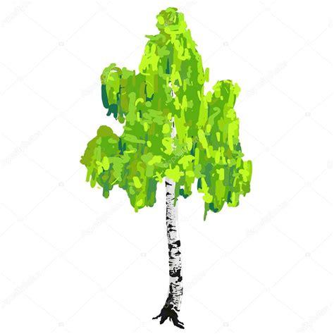 vector stock images birch tree stock vector 169 nikitinaolga 21947507