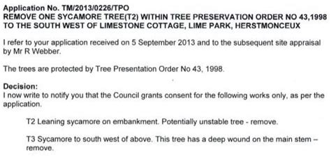 Request Letter Cutting Of Trees Tree Preservation Orders Surgery Tpos Lumberjacks Felling Removal Politics