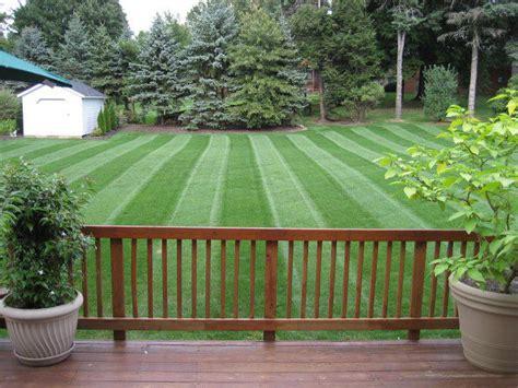 grass pattern roller yard roller front yard landscape designs lawn striper
