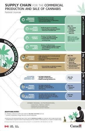 infographic: supply chain for the commercial production
