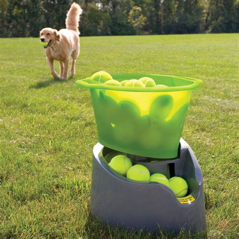 tennis balls for dogs godoggo remote fetch automatic tennis launcher for dogs the green