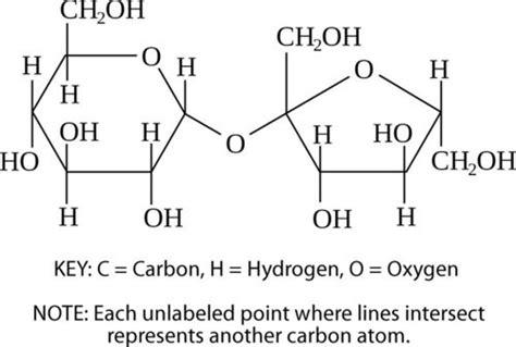 carbohydrates generally a molecular formula biochemistry science pal