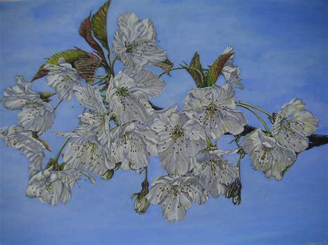 fiori di ciliegio dipinti quadri primo album cliccare sopra dipinti serafin