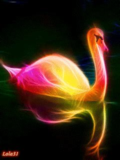 imagenes chidas neon spectacular animal portraits as electrifying bursts of
