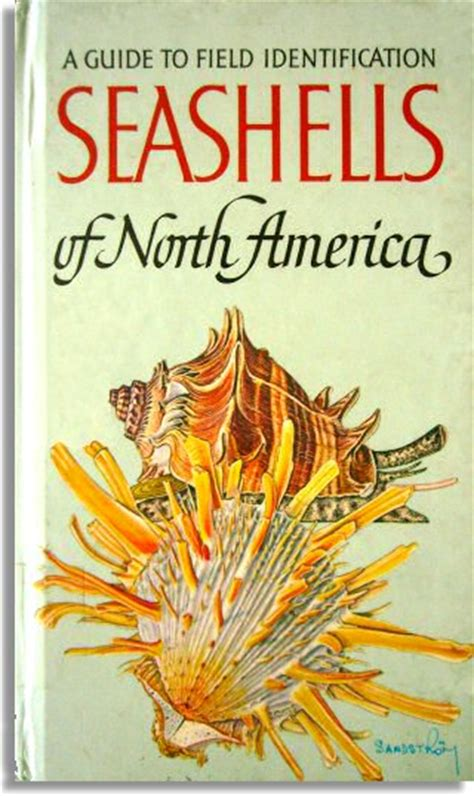the book a popular guide to the identification and study of our commoner fungi with special emphasis on the edible varieties classic reprint books seashells of america by r tucker abbott