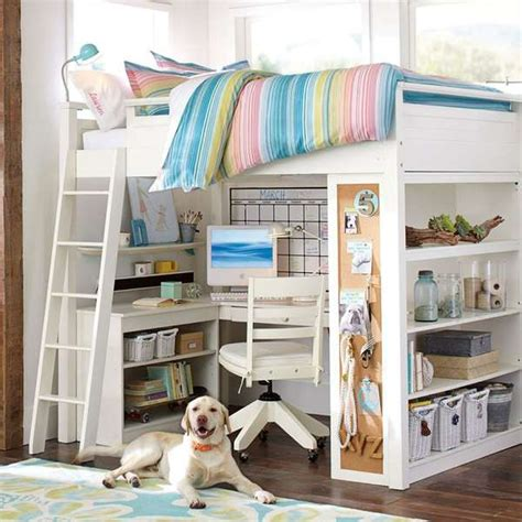 Compact Hybrid Bunk Beds Sleep And Study Study Loft Bunk Bed