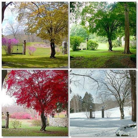 stagioni testo filastrocche e poesie dei mesi e delle stagioni