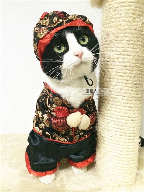 Kung Souvenir Dress Kartika Merah 259 best new year kung hee choy cards gifts images on peanuts