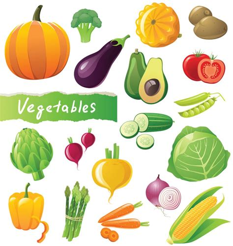 vegetables vector vegetables picture vector 3 vector sources
