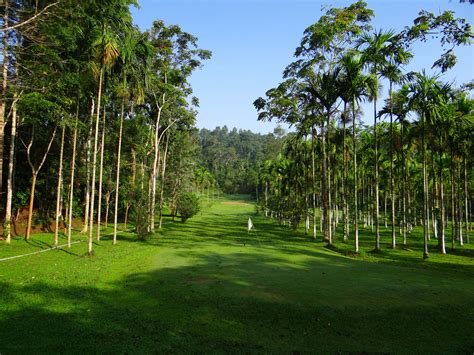 golf tree golf course with tropical trees in india image free