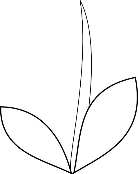 flower stem template print out pictures to pin on