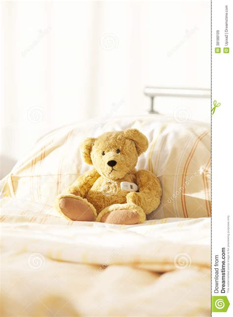 teddy bear bed bear teddy hospital bed stock image image of sheet duvet