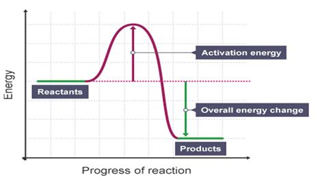energy profile diagram steemitschool exothermic and endothermic reactions