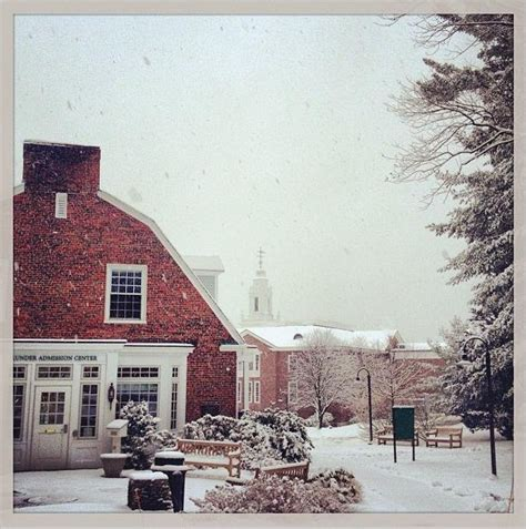 Babson College Mba Deadline by Personal Statements Applying To Babson Babson College