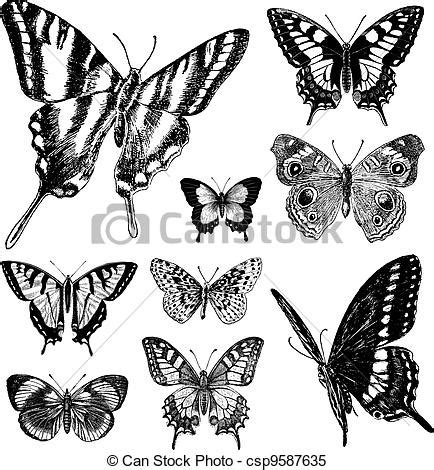 vector vintage butterfly set 1 all items are seperated