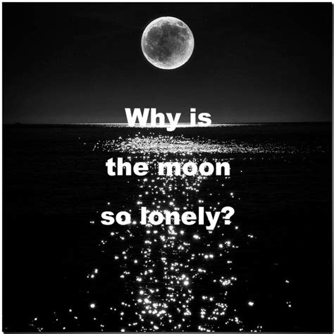 funny lonely quotes quotesgram