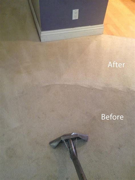 upholstery cleaning san francisco carpet san francisco carpet vidalondon