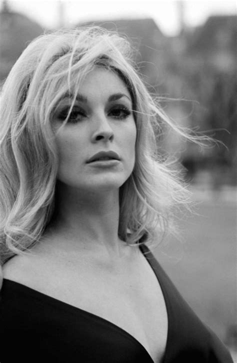 sharon tate sharon tate she was killed by the manson gang she was